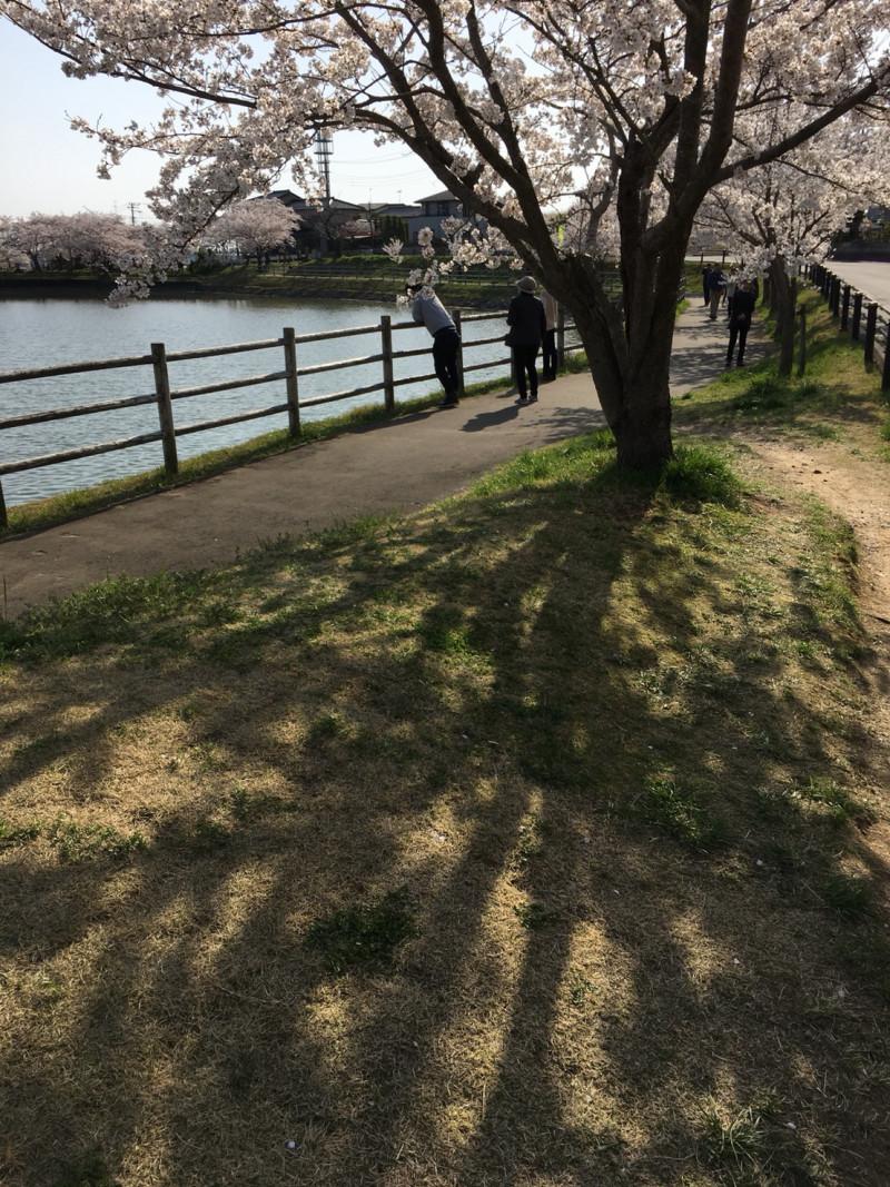 筑波 峠越え 写真3